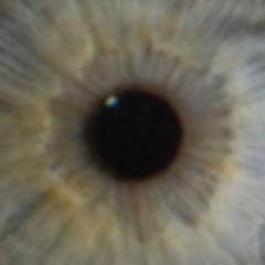 2018-Eye700.jpg