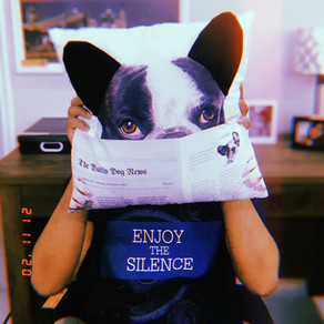 aproveite o silêncio