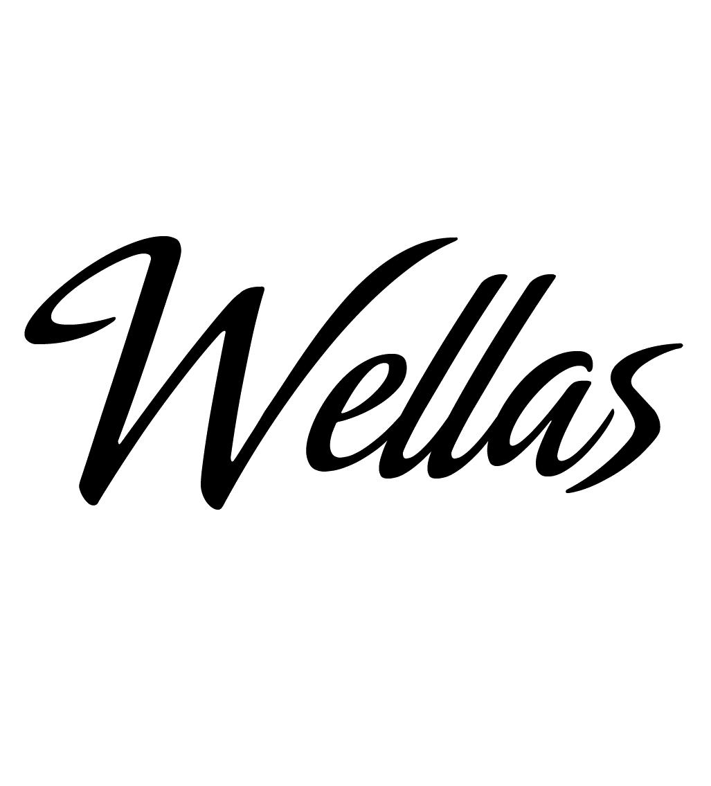 (c) Wellas.com.br