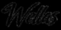Wellas, Wellas Diniz, WellasTV, #Wellas, Frases do Wellas, Frases, Textos, Motivação, Instagram de frases, blog de frases e textos,