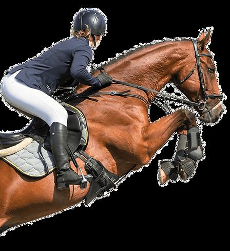 kisspng-horse-equestrian-hunt-seat-show-