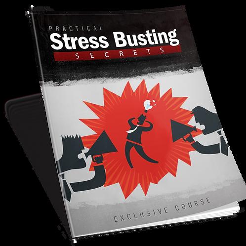Practical Stress Busting Secrets (Report) eBook