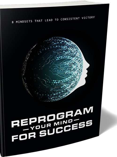 Reprogram Your Mind for Success eBook