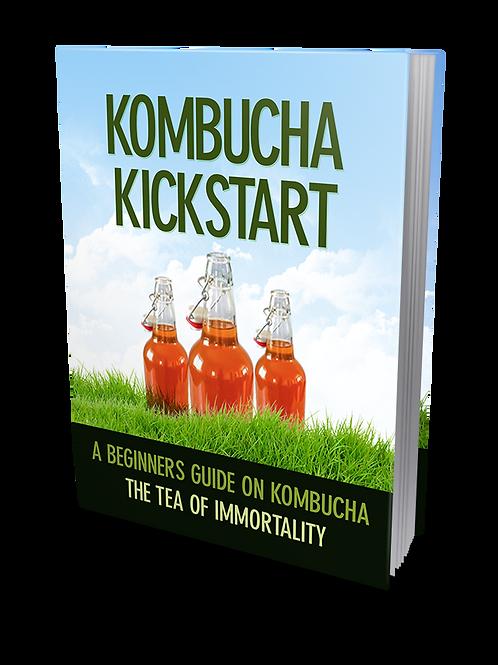Kombucha Kickstart eBook