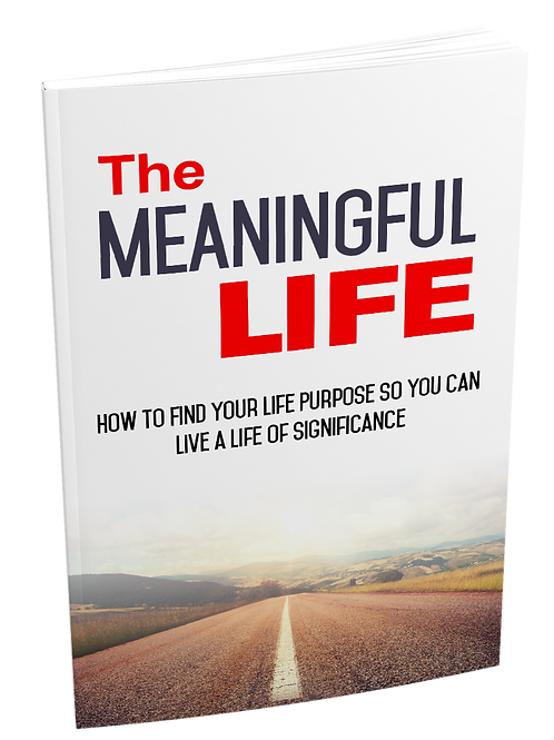 The Meaningful Life eBook
