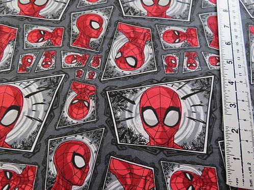 Large Spider Man