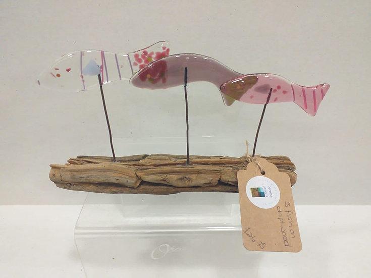 3 fish on driftwood