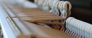 Intonation von Klavieren und Fluegeln, Frank Weschenfelder, Klavierbau