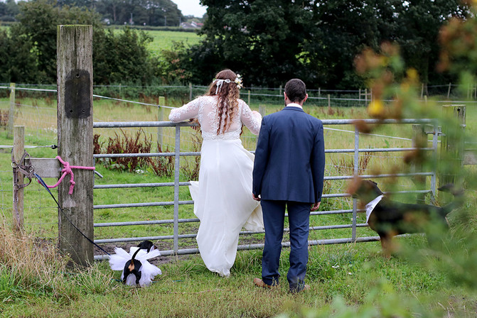 Going over the gate in your wedding dress!