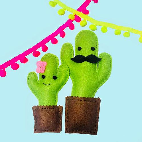 Cuddly Cacti