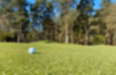ladybank golf1.jpg