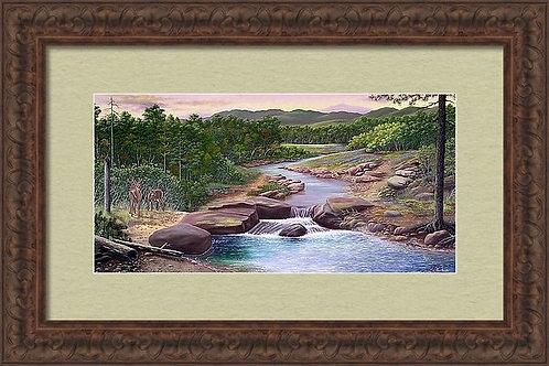 Peaceful Stream Art Print