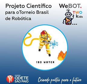 post face com projeto webot two.jpg
