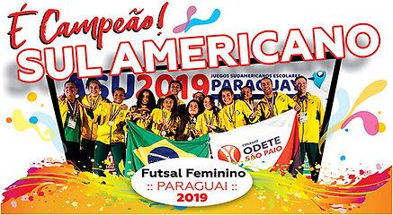TOP Sulamericana.jpg
