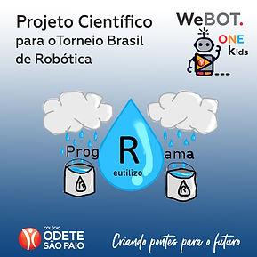 post face com projeto webot one.jpg
