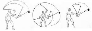 Dieses Bild zeigt drei verschiedene Gelenke, aus denen gehauen werden kann.
