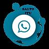 SALTOITU.png