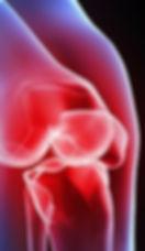 knee-cartilage-regeneration-e1449022470124.jpg