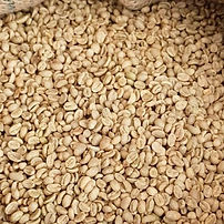 Green_Coffee_Beans_edited.jpg