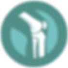 Knee Exercises   Melbourne Orthopaedic & Trauma Institute