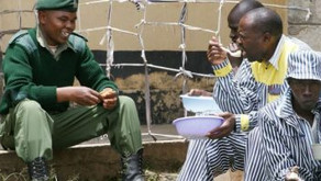 Crossing Divides: Kenya jail's 'mindful' scheme aims to bring sides closer