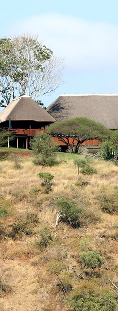 Nkwazi Lodge, South Africa