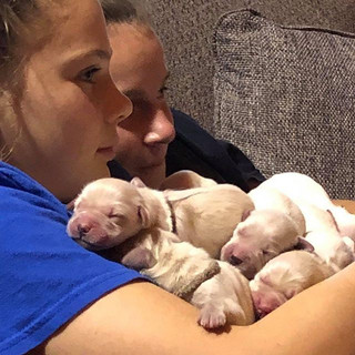Nine cute puppies with two cute teens!!.