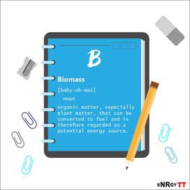 (B)iomass.jpg