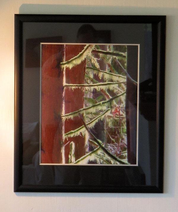16x20-cedar & lichen-there is a place fo