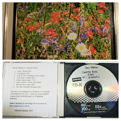 David Cheatley's Computer Music CD