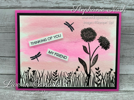 Product of the Week:  Field of Flowers