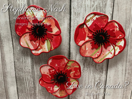 3D Project:  Poppy Magnets