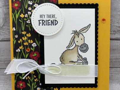 Hey There, Donkey Friend