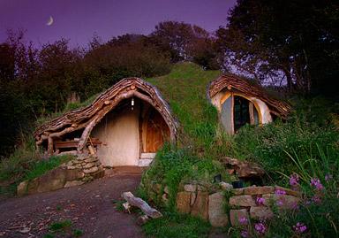 A Woodland Home