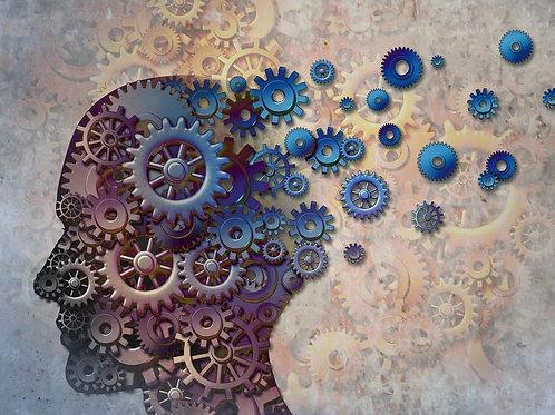 Alzheimer : toute la vérité sur la maladie du siècle - Bruno Dubois