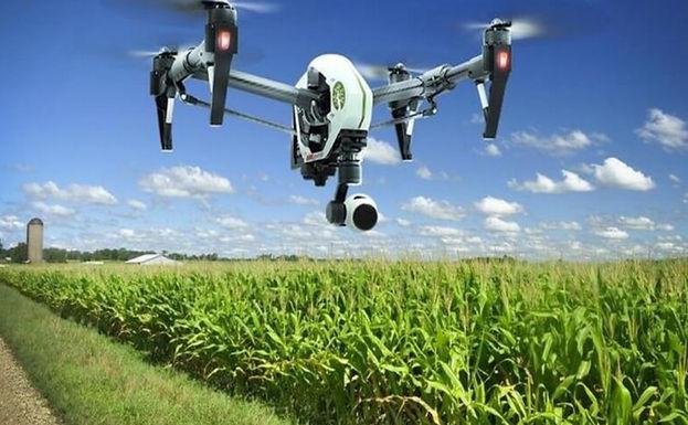 Úc sẽ giới thiệu thị thực nông nghiệp mới cho công dân quốc tế vào cuối tháng 9,2021