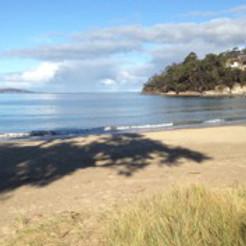 Heartbeat Walkers and Talkers Walking Group - Kingston Tasmania