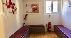se1 dentist