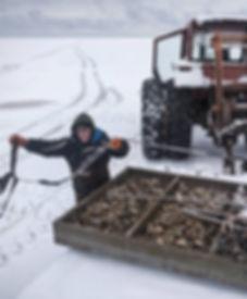 PEI oysters snow_edited.jpg