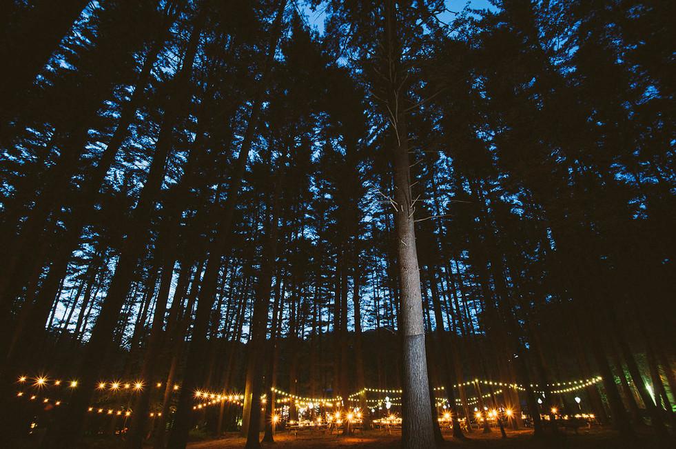 Camp Timber Tops Reception Venue