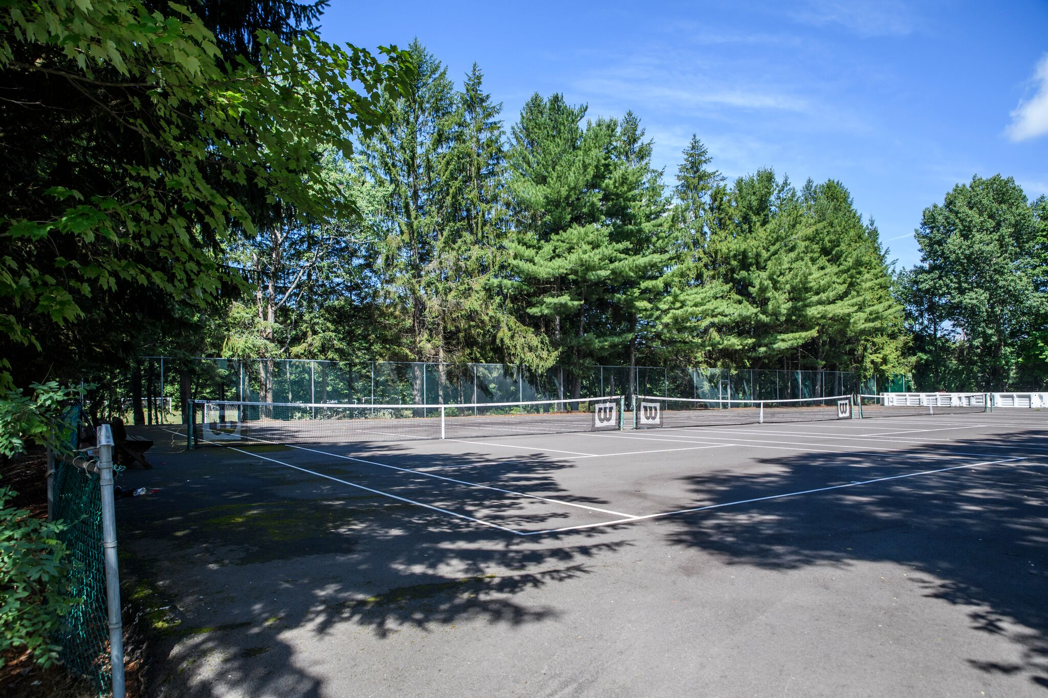 Tennis Courts at Pine Forest Camp