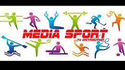 News Web Media-Sport
