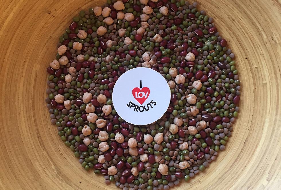 Organic Mixed Legumes 300gms