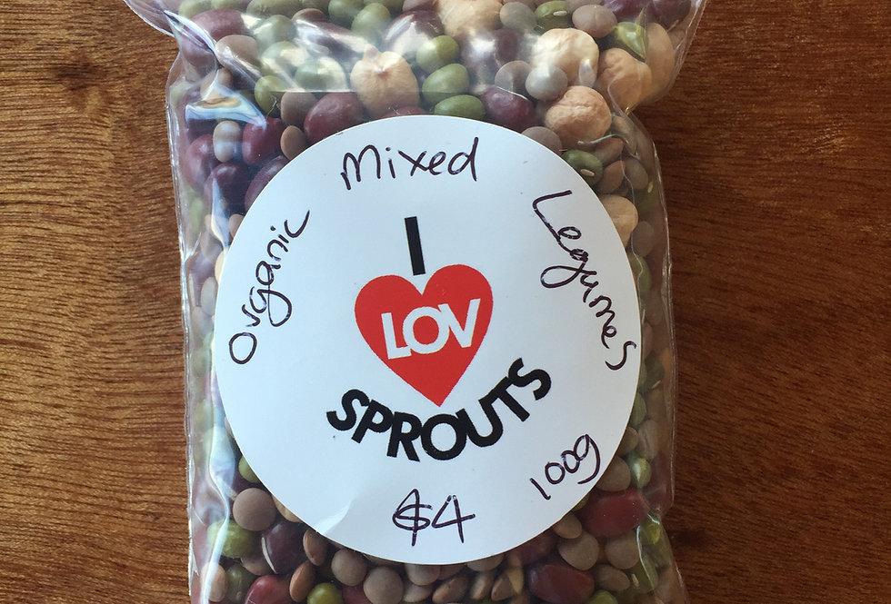Mixed Legumes 100gms