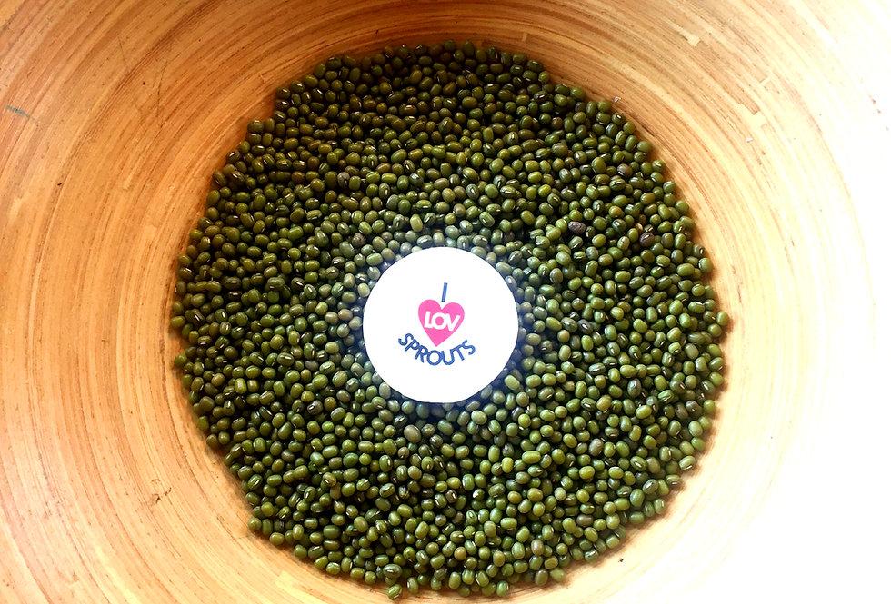 Organic Mung Beans 100gms