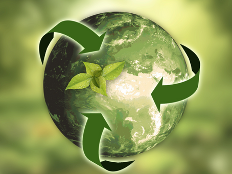 Tips to Go Green for Earth Day