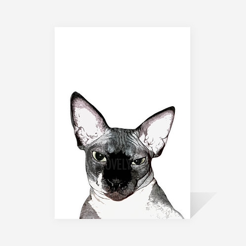 Sphynx Cat / Phantom Print
