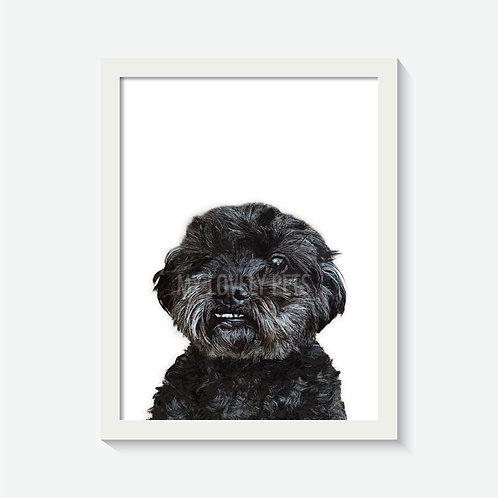 A3 Custom Pet Artwork With Frame
