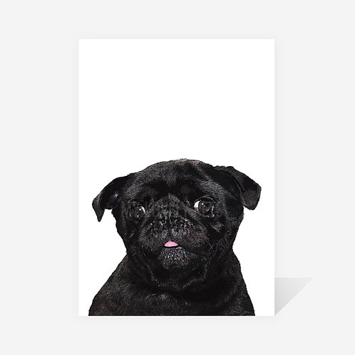 Pug / Audrey Print