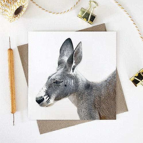 Damien / Kangaroo Greeting Card